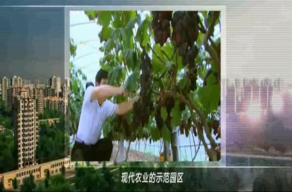 zhihui城市―宣传pian